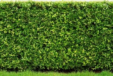 Bahçe Duvarı Uygulaması