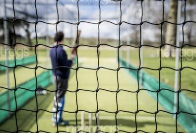Kriket File Ağı
